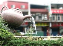坪林包種茶節  喝茶看表演