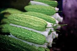 苦瓜這類表面凹凸不平的蔬菜,更須仔細刷洗,最後再去除蒂頭及根部。