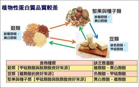 植物性蛋白質優缺點(圖片來源:營養師Stella的減肥&營養部落格)