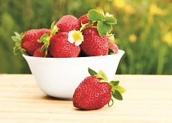 如果少吃蔬菜就以多吃水果來彌補,容易造成糖分攝取過高的問題