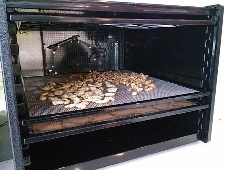 Excalibur伊卡莉柏全營養低溫乾果機內部運轉情況