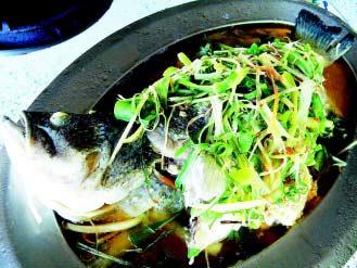 鳳凰土雞城的鱸魚,用山泉水餵養,肉質鮮美。