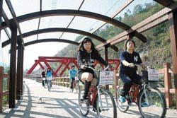 大湖南湖村單車道穿梭在農田和草莓園上方,景致宜人
