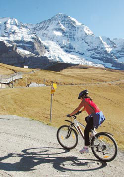 針對自己的需求才能選擇適合自己的單車之旅。否則人到現場才發現自己無法勝任具挑戰性的單車行程,會相當掃興。