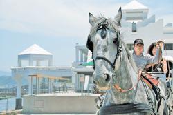 5月底開幕的龍洞四季灣,以浪漫度假風情與多樣戲水玩樂吸引遊客