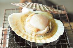 唇邊軟Q、干貝細緻還有軟香的肝臟,以及鮮甜的湯汁菁華,小小一個鹽烤帆立貝可以嘗到多種不同滋味和口感