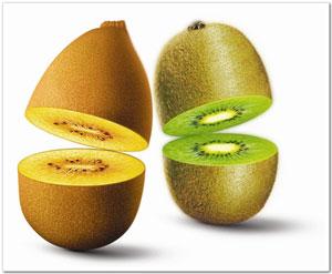 真正的去油膩作用,是促進消化,幫助腸道蠕動,減少毒素或多餘養分的吸收。因此挑選擁有高膳食纖維的水果,更可以達到清掃腸道的效果。
