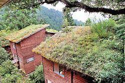明池山莊的青苔木屋,舖了土的屋頂長出蕨類與小草,以自然工法達到冬暖夏涼