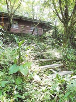 在平林休閒農場的林間小屋,就像在森林裡度假。