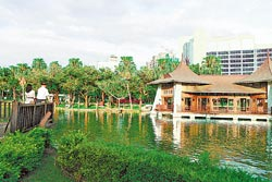 台中公園這些年來又變成情侶約會地點。