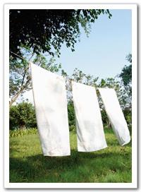 如果洗過的衣物都會有異味,此時要定期清洗洗衣機內槽,而且洗完衣服之後不要馬上把機蓋合上,應讓機槽通風且讓濕氣散發掉後才蓋上機蓋。