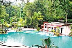 ▲雲仙樂園游泳池主要引用當地山泉水,游起來相當舒爽透心涼。攝影  陳志東