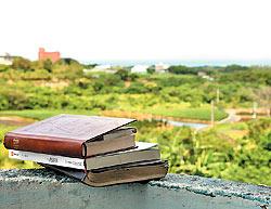 ▲客居三芝,可帶一本好書在此度過山居歲月。攝影  鄧博仁