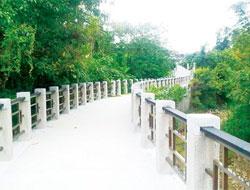 頭寮生態步道闢建18年來首度對外開放,是今年慈湖旅遊季觀光重點。圖  桃園縣政府、文  楊宗灝