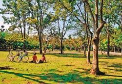 ▲從度假村可以租借腳踏車到水庫旁的營地,享受森林的綠意。攝影  黃麗如