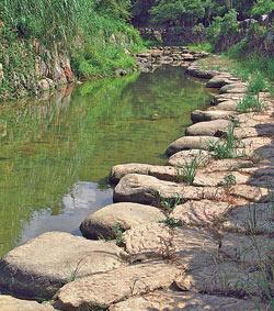 ▲寬闊的跳石讓親水活動更有趣。攝影  楊智仁