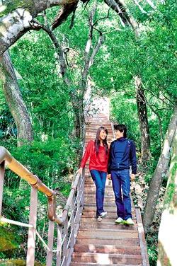 ▲獅頭山步道剛整修完成,木棧道和相思林融為一體,遊走相當舒服。攝影  黃麗如
