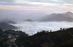 ▲嘉義縣阿管處所主推隙頂「二延平步道」難易適中,鄰近阿里山公路,步道盡頭觀景台是最容易觀賞日出、雲瀑地點。攝影  鄭光宏