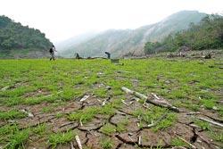 ▲大地谷每年有9個月埋在水裡,只能趁冬末春初枯水期,走過乾涸的河岸前往。攝影  陳志東
