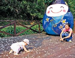 ▲桐花綻放的時分適合大人小孩一起在花海裡優遊,感受客家庄的浪漫。客委會提供